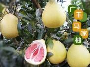玉山县植荣农业发展有限公司-